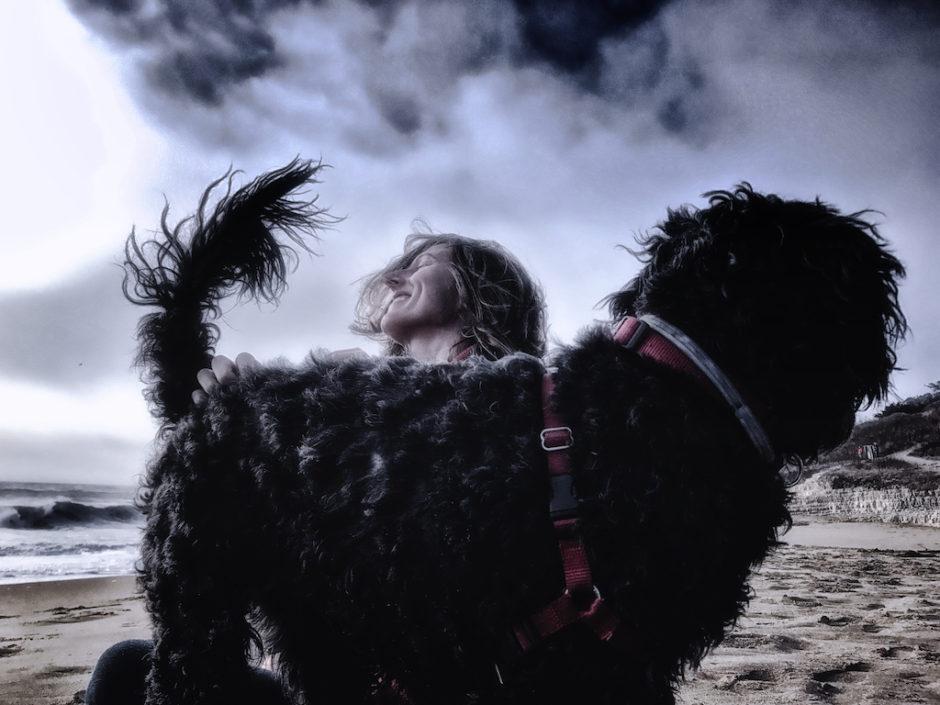 Lindsey Dillon, Davenport, Portuguese Water Dog, Sharka, Ocean, Beach